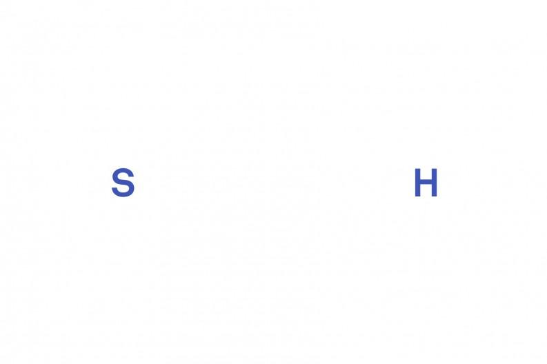 SN_Logo_RGB-793x528